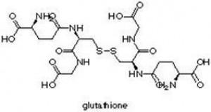 Glutation - potęga organizmu