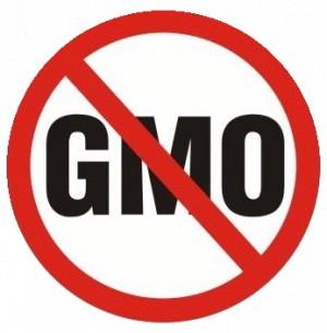 Petycja przeciw żywności modyfikowanej genetycznie GMP